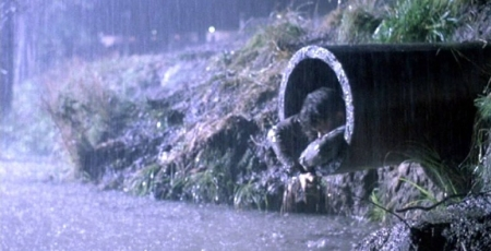 The-Shawshank-Redemption-Facts-and-Secrets-14-Sewage-Escape